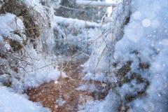корка 2 подчеркивает текстуру поверхности солнечного света снежка картины замороженного озера естественную тонко Стоковое Фото