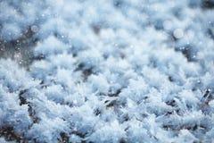корка 2 подчеркивает текстуру поверхности солнечного света снежка картины замороженного озера естественную тонко Стоковые Фотографии RF