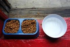 Корм для домашних животных и вода Стоковые Изображения RF