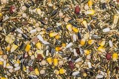 Корм для домашних животных, различное зерно для грызунов Стоковые Изображения