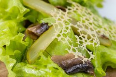 Корнишоны, грибы и решетка сыра Стоковое фото RF