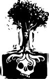 Корни дерева черепа Стоковые Фото