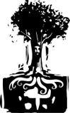 Корни духа Стоковое фото RF