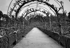 Корнуолл, потерянные сады Heligan Стоковое фото RF
