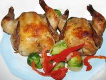 Корнуольские курицы Стоковое Изображение RF