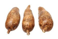 3 корня yuca Стоковые Фото