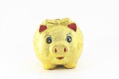 Коробка денег типа Piggy банка Стоковые Изображения