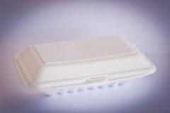 Коробка еды пены изолированная на белой предпосылке Стоковые Изображения RF