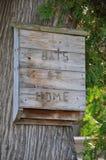 Коробка деревянной летучей мыши Стоковые Изображения RF