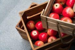 Коробка деревянной клети вполне свежих красных яблок Стоковые Изображения