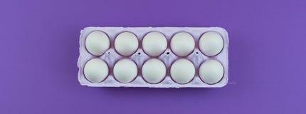 Коробка знамени прямоугольная с яичками цыпленка Стоковые Изображения RF