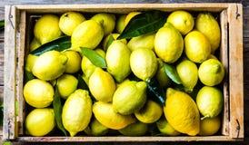 Коробка лимонов с свежими листьями на деревянной предпосылке с космосом экземпляра Взгляд сверху Стоковые Изображения RF
