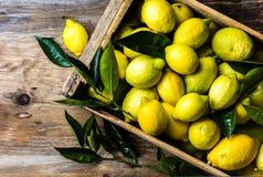 Коробка лимонов с свежими листьями на деревянной предпосылке с космосом экземпляра Взгляд сверху Стоковая Фотография