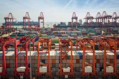 Коробка контейнера переноса Shanhai к эпицентру деятельности Сингапура Стоковое фото RF