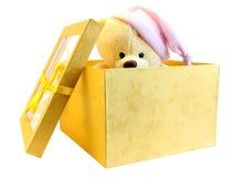 коробка медведя смотрит вне Стоковые Фото