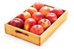 Коробка нектаринов Стоковая Фотография RF
