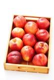 Коробка нектаринов Стоковые Фото
