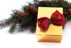 Коробка подарка золота на ветви ели Стоковая Фотография