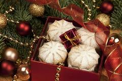 Коробка подарка Кристмас с печеньями Стоковое Фото