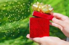 Коробка подарка в руках женщины Стоковое фото RF