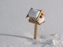 Коробка птицы с снегом Стоковое Изображение