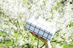 Коробка салфеток аллергически стоковое фото