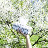 Коробка салфеток аллергически стоковое изображение