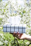 Коробка салфеток аллергически стоковые изображения rf