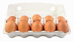 Коробка свежих коричневых яичек на белизне Стоковая Фотография