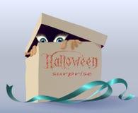 Коробка с сюрпризом Стоковая Фотография RF