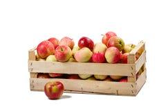 Коробка с яблоками Стоковые Изображения RF