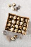 Коробка яичек триперсток Стоковое Изображение RF