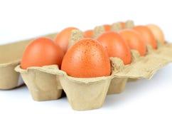 Коробка яичек цыпленка Стоковая Фотография RF