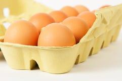Коробка яичек Стоковое Изображение