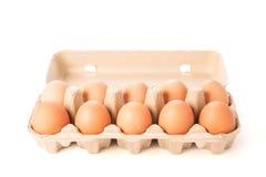 Коробка яичка картона при 10 коричневых изолированных яичек Стоковая Фотография