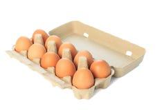 Коробка яичка картона при 10 коричневых изолированных яичек Стоковые Изображения RF