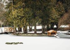 Коробка для вложенности водоплавающей птицы в парке зимы снежном Стоковое фото RF