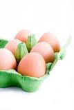 коробка eggs зеленый цвет Стоковая Фотография RF