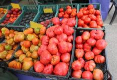 Коробки вполне томатов стоковая фотография