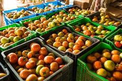 Коробки вполне свежих овощей томата для рынка на рознице Стоковая Фотография