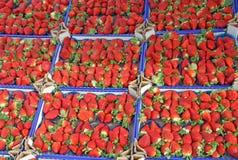 Коробки вполне сочных красных клубник и проданные на местном рынке Стоковое Изображение RF