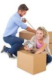 Коробки молодой упаковки пар moving Стоковое фото RF