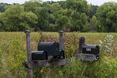 Коробки почты на болоте Стоковая Фотография RF