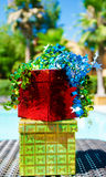 2 коробки подарка плавательным бассеином Стоковая Фотография