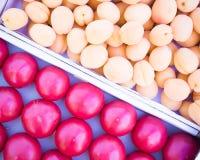 коробки свежих абрикосов и томатов, счетчика продавца фрукта и овоща, farmer' рынок s стоковое изображение