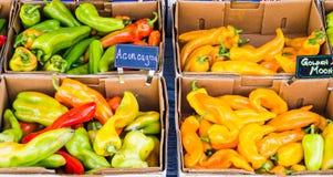 Коробки свежих горячих перцев Стоковое Фото