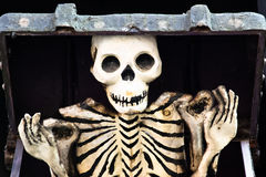 коробки скелет вне Стоковое Фото