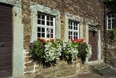 Коробки цветка окна Стоковая Фотография