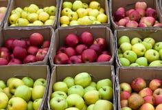 коробки яблок Стоковое Изображение RF