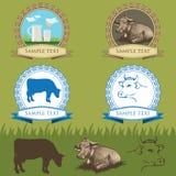 Корова, винтажный комплект ярлыков иллюстрация штока